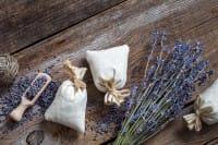 Deodoranti per ambienti: 8 alternative naturali e non tossiche che funzionano davvero