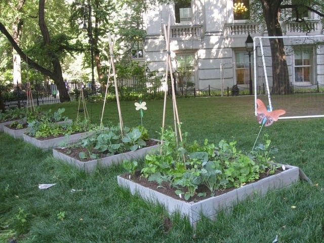 Come fare l 39 orto con i vicini di casa non sprecare - L orto in giardino ...