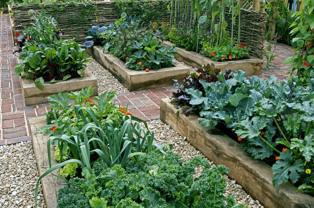 come fare l'orto con i vicini di casa