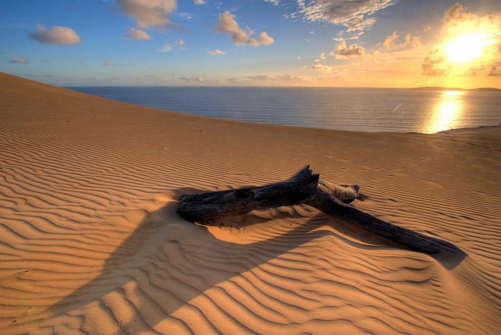 Nel Deserto Nel Deserto | Non Sprecare