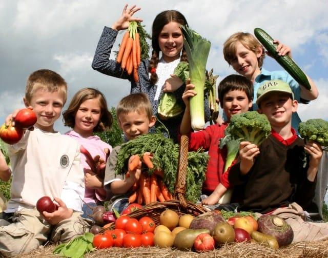 """A Helsinki nasce il """"foodsharing di quartiere"""" per non sprecare cibo"""