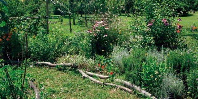 Un orto al posto dell 39 ospedale psichiatrico l 39 esperimento - L orto in giardino ...