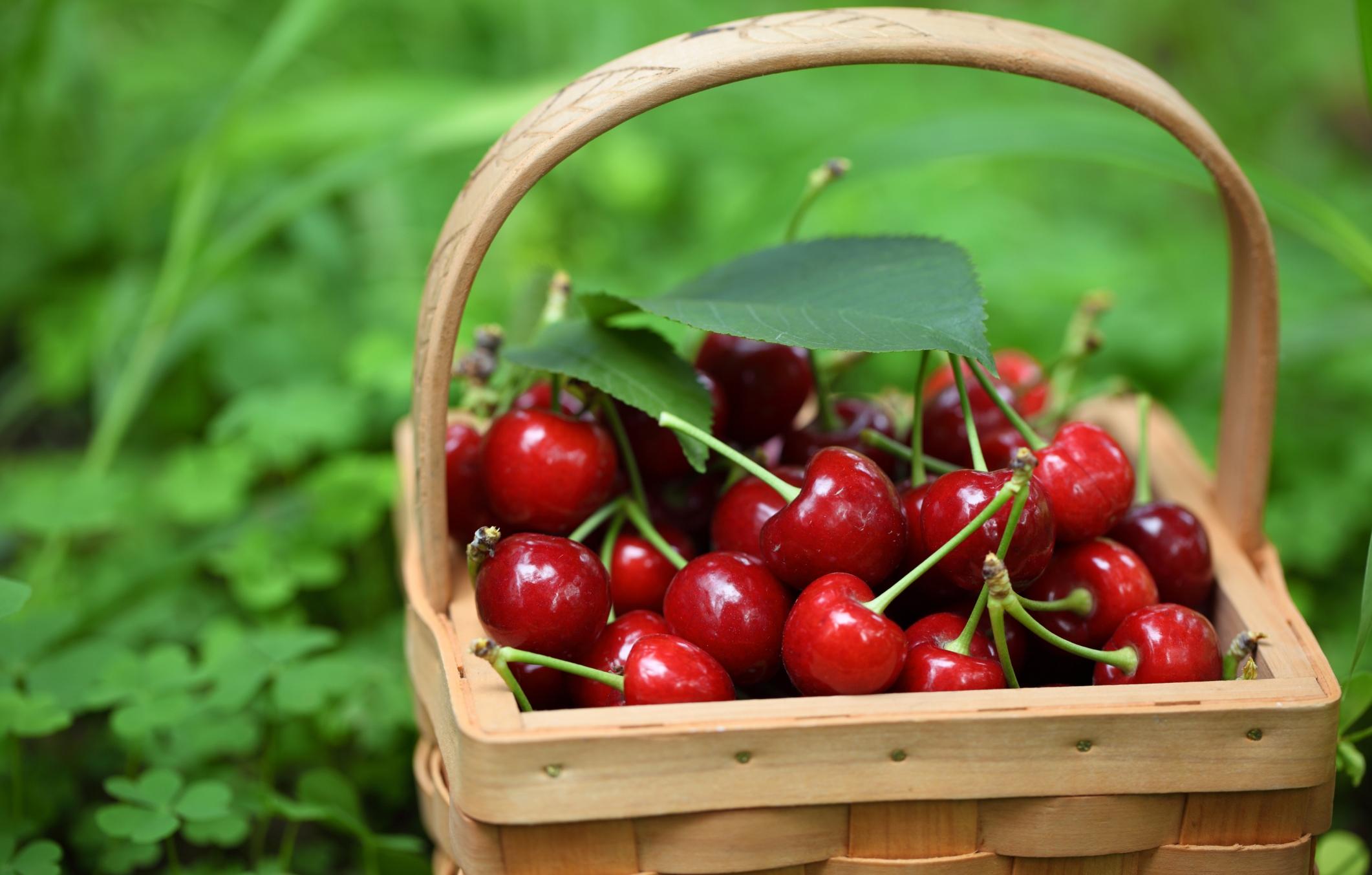 Effetti benefici delle ciliegie non sprecare for Immagini con i brillantini