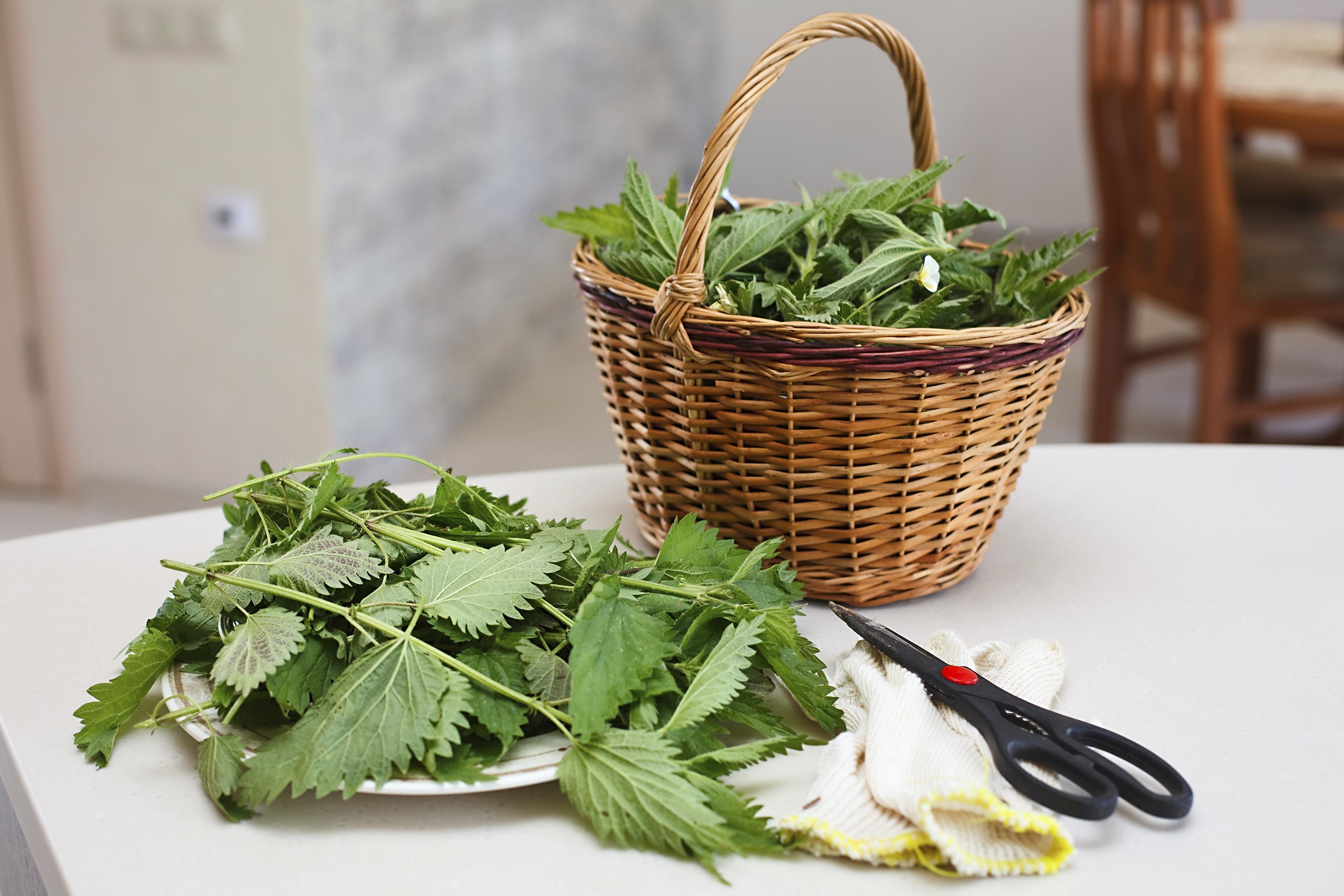 ricette con ortiche: le polpette - non sprecare - Ortiche In Cucina