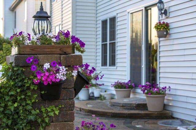 Vacanze estive: tutti i consigli per curare le piante durante la vostra assenza