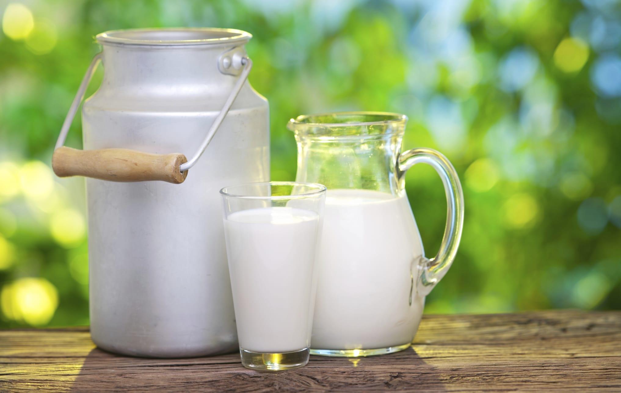 dove comprare il latte crudo alla spina