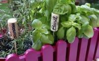 Eco-etichette per la cura dell'orto
