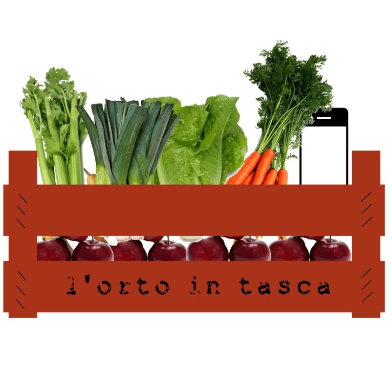 """L'app """"L'Orto in tasca"""" per individuare le aziende agricole dove trovare frutta e verdura a km zero"""