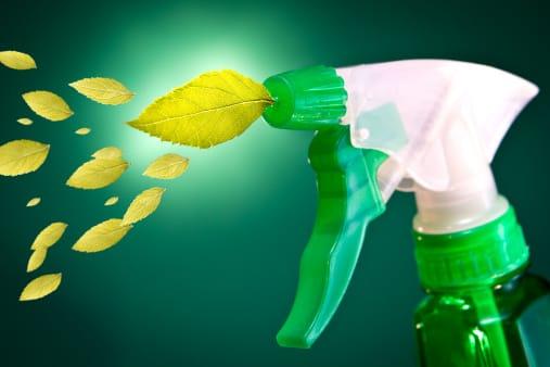 Lisciva di cenere: come prepararla in casa e i consigli per utilizzarla nelle pulizie domestiche
