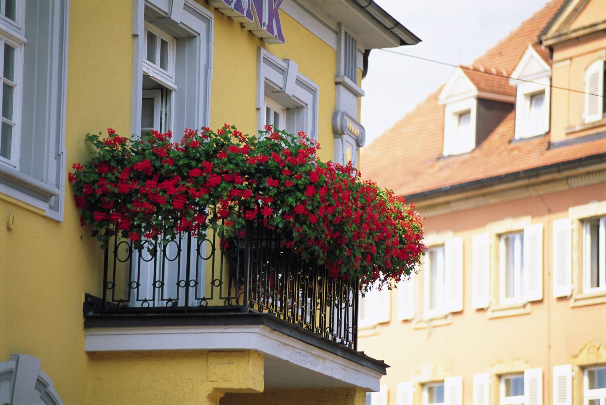 Favoloso Come arredare il balcone con i fiori - Non sprecare ED96