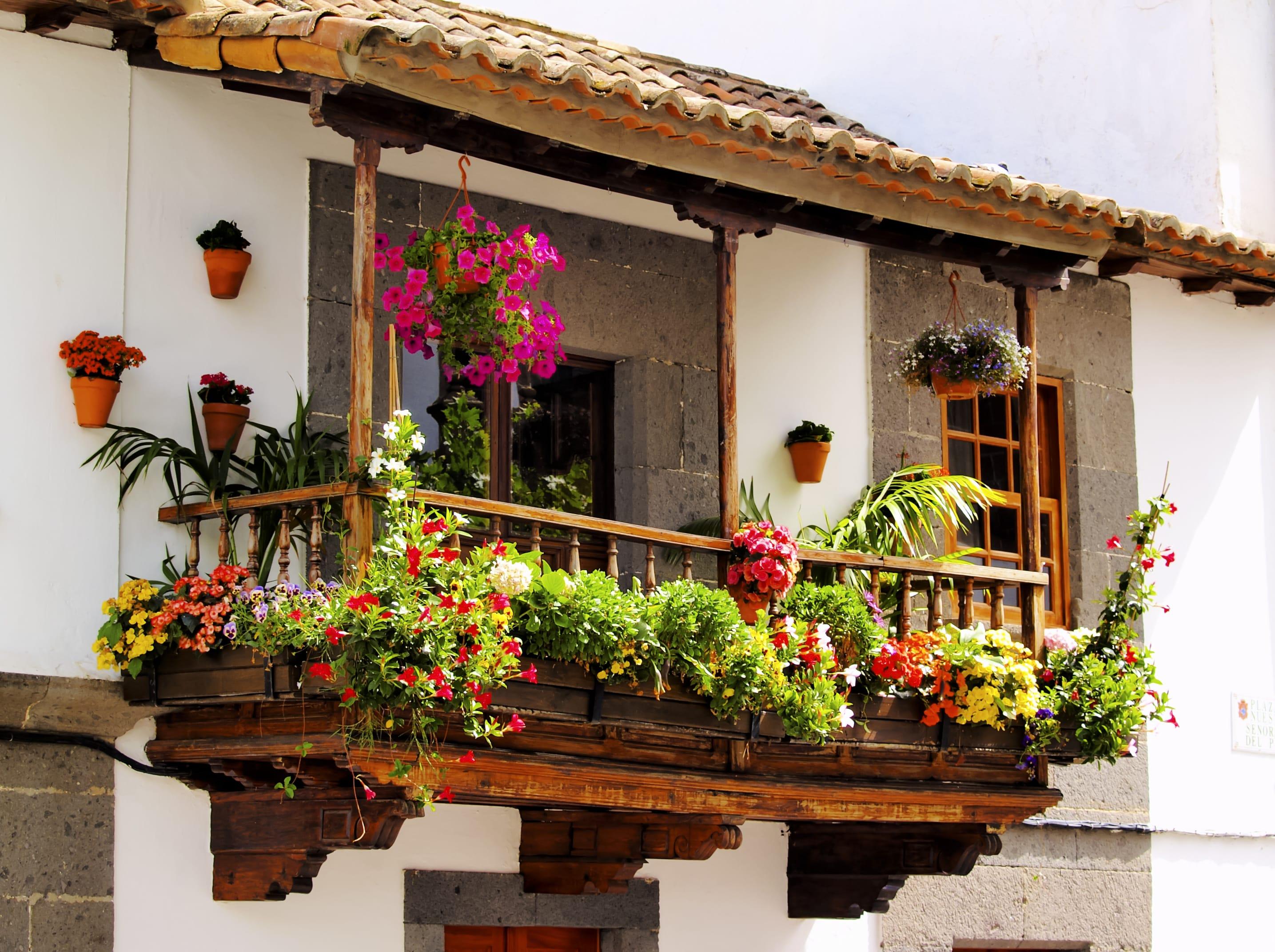 Piante Per Balcone : Come arredare il balcone con i fiori non sprecare