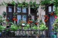 Come arredare e decorare il balcone con i fiori