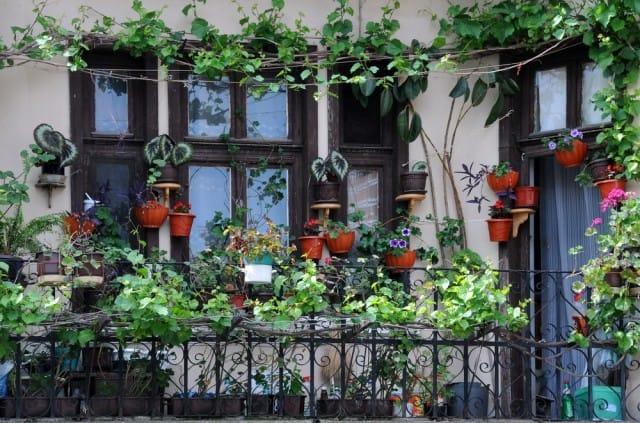 Come arredare il balcone con i fiori non sprecare for Soluzioni per piccoli giardini