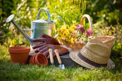 La semina, il raccolto e tutti i lavori utili da fare nell'orto durante il mese di maggio