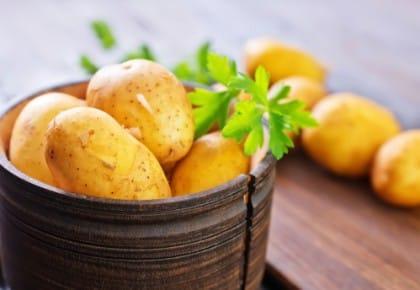 come coltivare patate in vaso in balcone e in casa