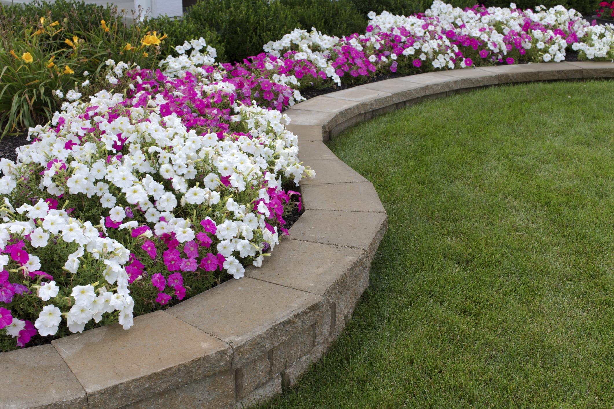 giardino ecosostenibile e contro gli sprechi: 5 consigli utili ... - Come Fare Un Giardino