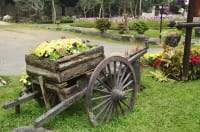 Giardino ecosostenibile e contro gli sprechi: tutti i consigli utili