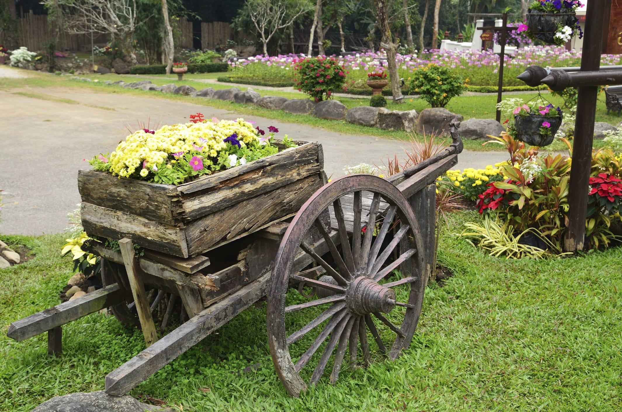 Giardino ecosostenibile e contro gli sprechi 5 consigli for Organizzare il giardino di casa