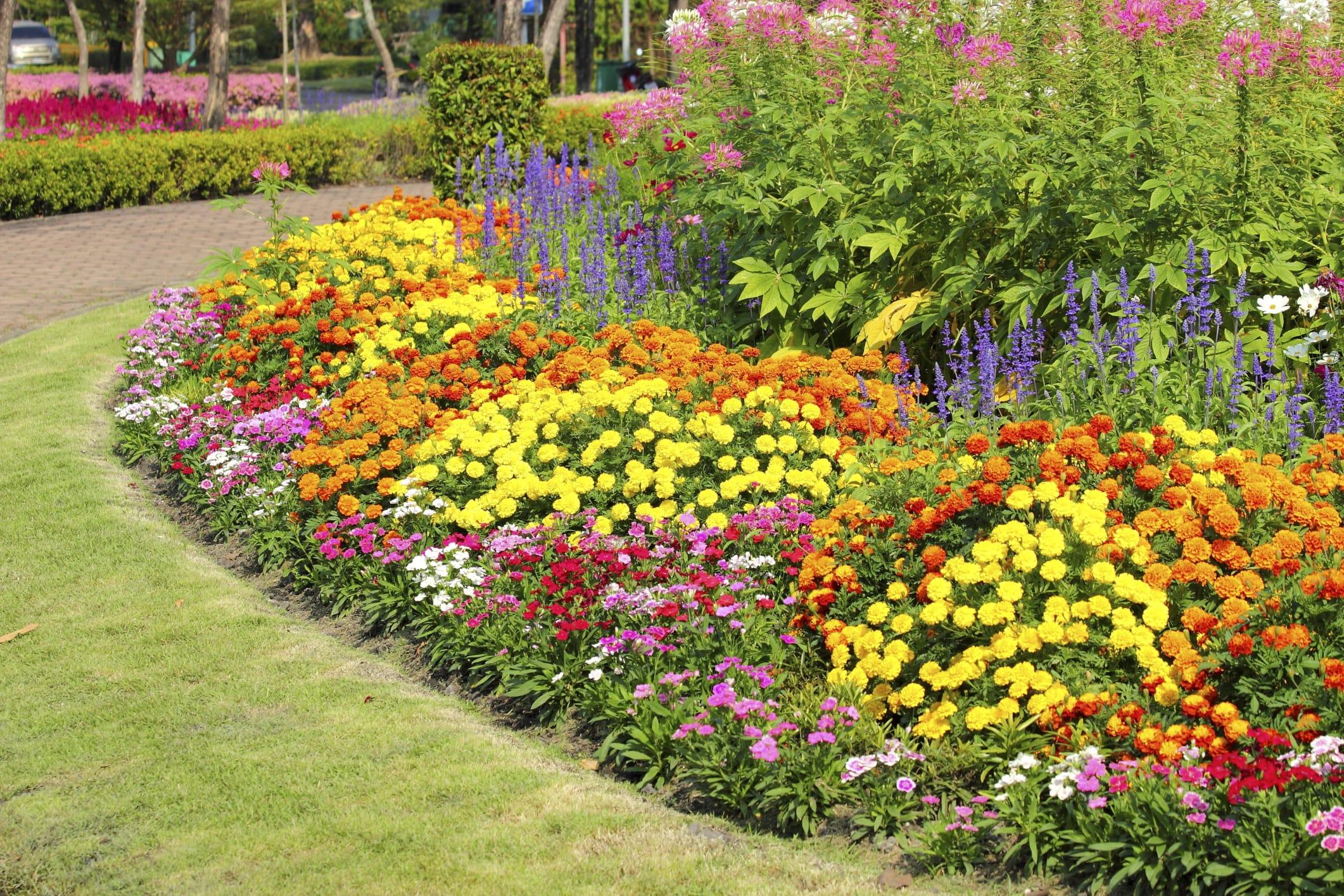 Giardino ecosostenibile e contro gli sprechi 5 consigli for Esempi giardino