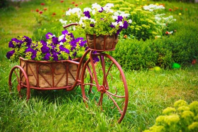 Giardino e ortoterapia: coltivare la terra come toccasana per la salute