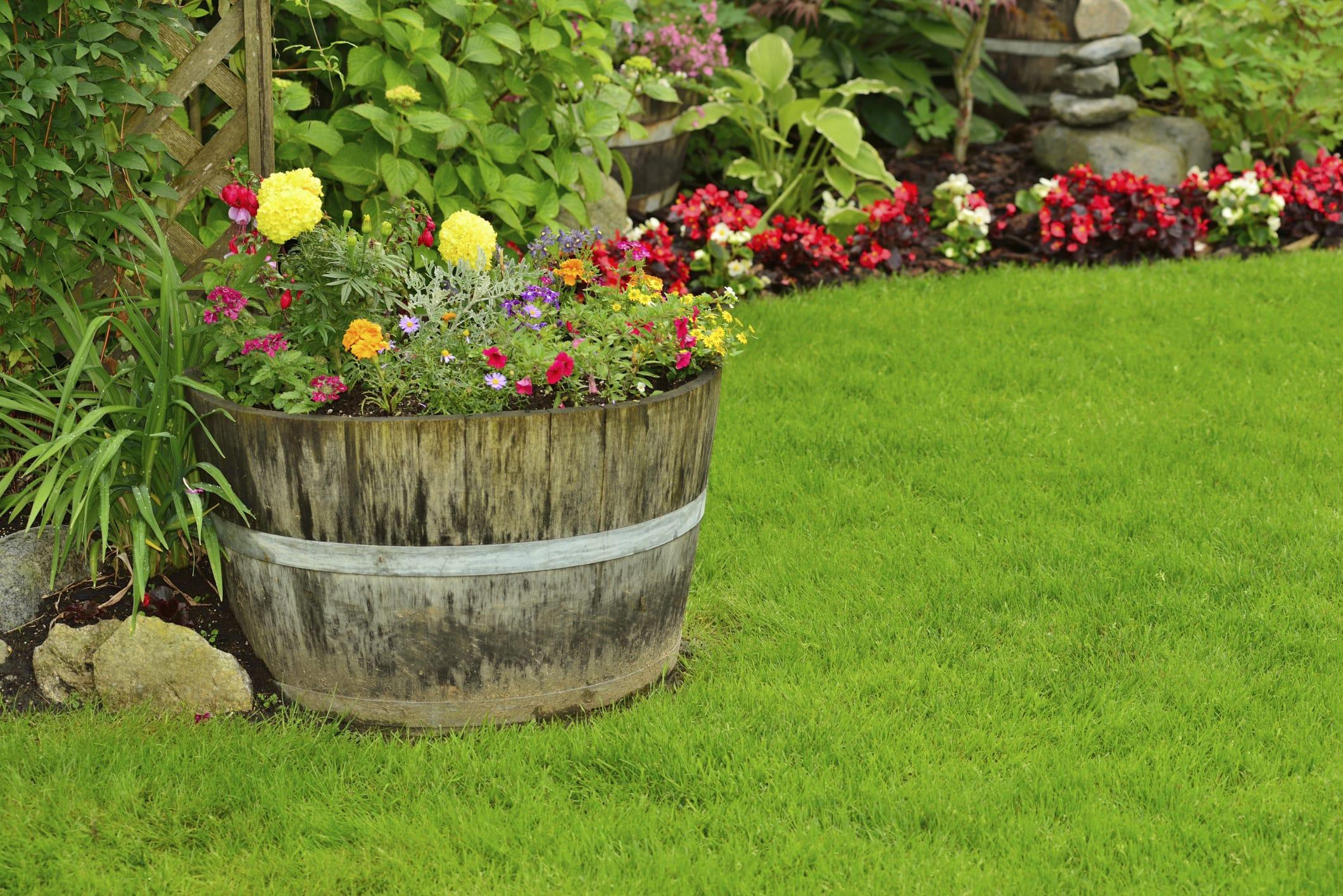 Benefici ortoterapia non sprecare - Idee per aiuole giardino ...