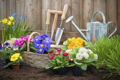 Attrezzi da giardino per la coltivazione di piante e fiori