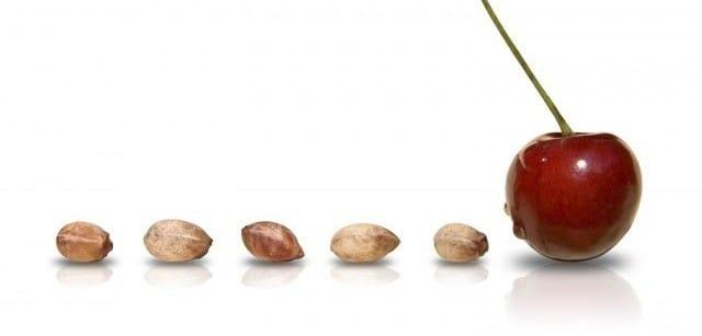 Cuscino anti trauma con noccioli di ciliegie: come farlo in casa