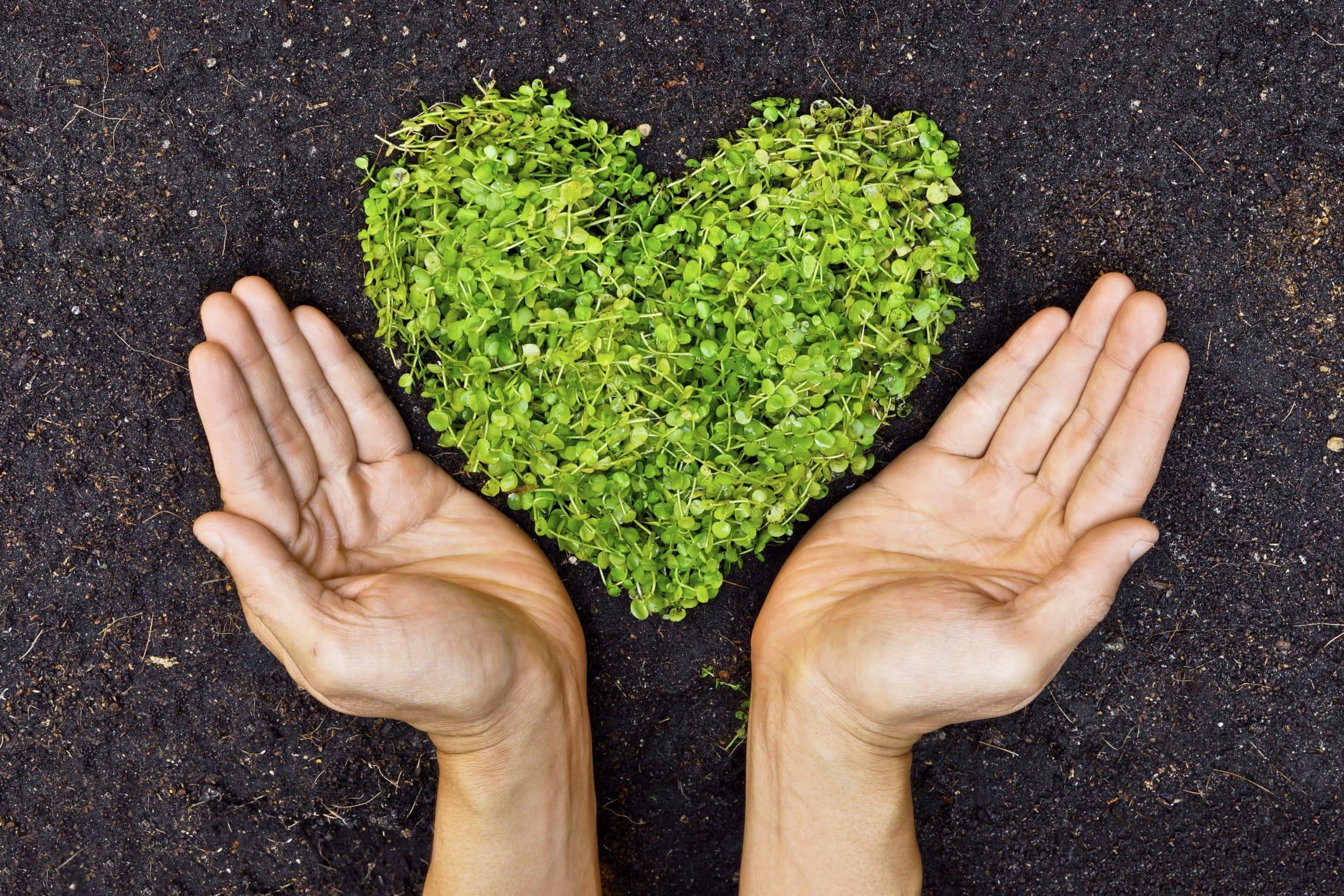 Giornata Mondiale dell'Ambiente 2014: gli eventi in programma in Italia e nel mondo