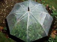 Ombrelli rotti e fuori uso, come diventano fioriere, appendiabiti, stendini per i panni (foto)
