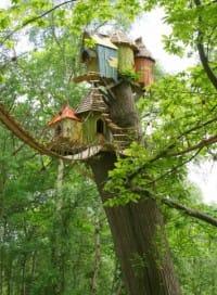 vivere in un villaggio di case sugli alberi in piemonte