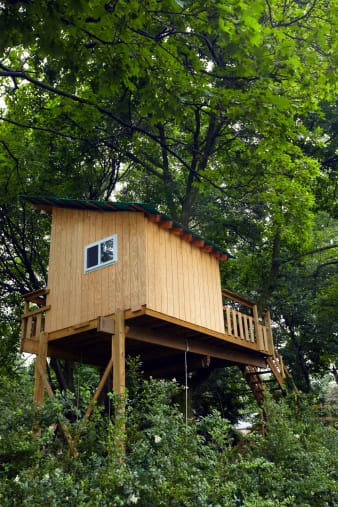 Un villaggio di case sugli alberi in piemonte non sprecare - Casa sugli alberi ...