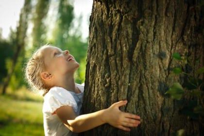 nasce a roma la prima scuola in mezzo al bosco