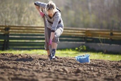 decreto legge agricoltura