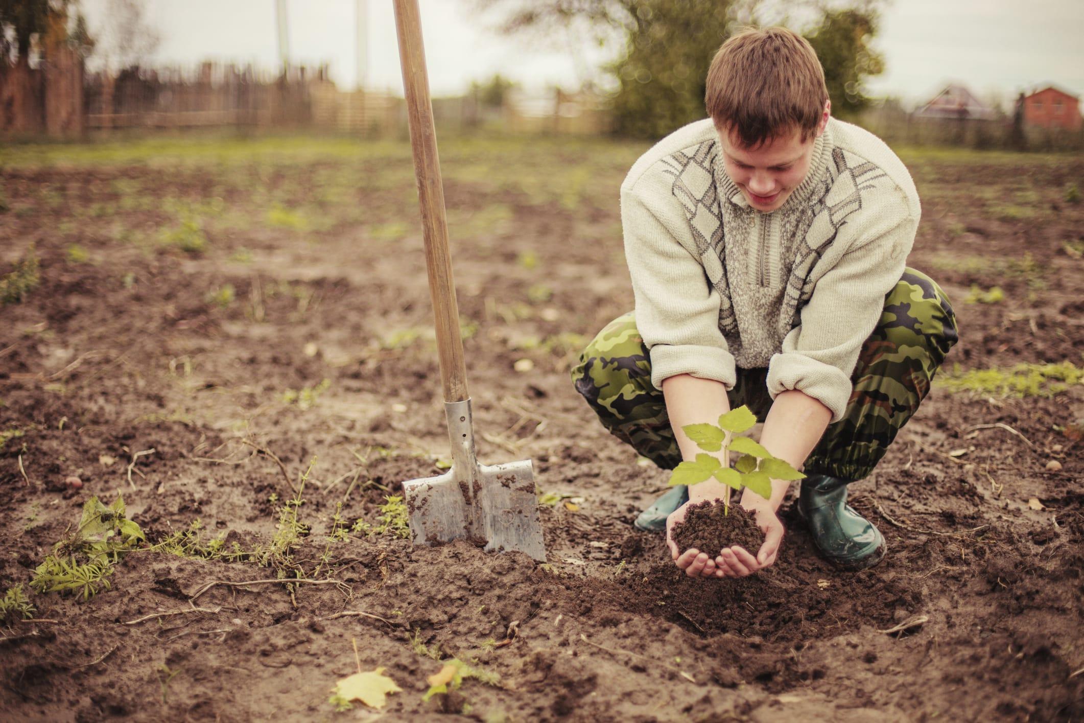decreto-legge-agricoltura-decreto-campolibero
