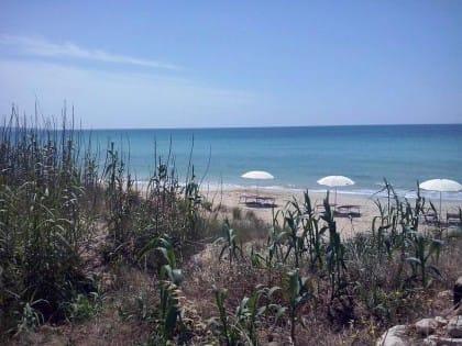 Nel Salento, a Pescoluse, il primo agri-beach d'Italia in cui si coltivano verdure bio