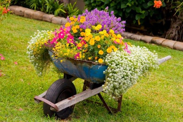 rimedi-naturali-eliminare-ruggine-efficacemente (1)