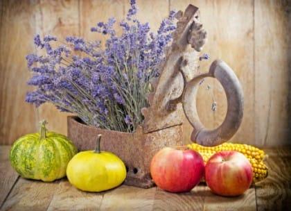 ruggine: i rimedi naturali per eliminarla efficacemente