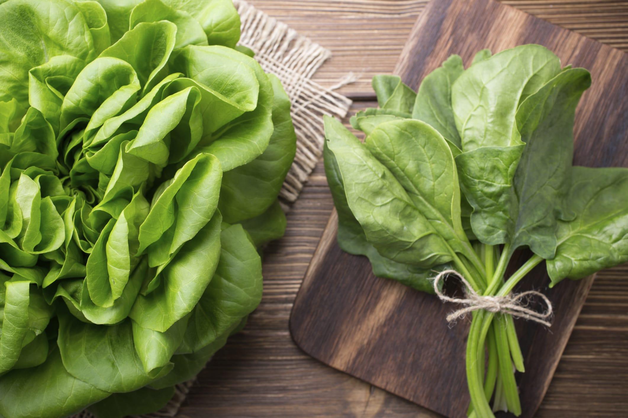 come coltivare gli spinaci non sprecare