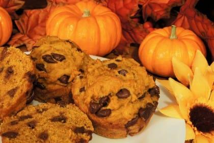ricette dei muffin alla zucca e cioccolato anche vegan