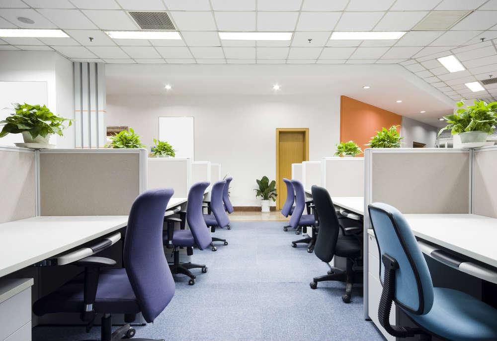 benefici delle piante in ufficio