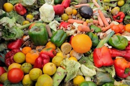 Breading, la start up contro gli sprechi di cibo