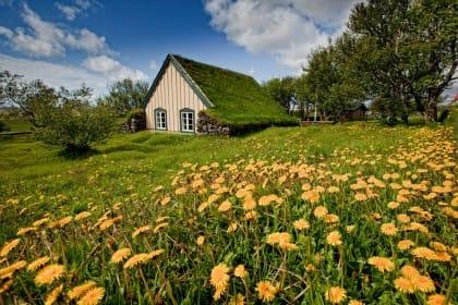 chiese con tetto ricoperto d'erba