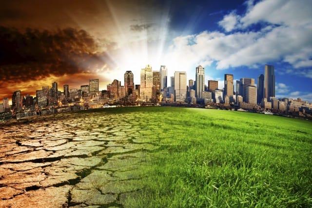 Cambiamenti climatici: come aiutare concretamente animali e ambiente