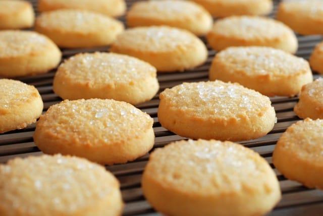 biscotti tutte le ricette