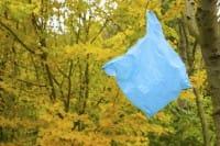 La truffa dei sacchetti di plastica: sono vietati, ma ne usiamo 198 a testa. I tedeschi appena 30 (video)