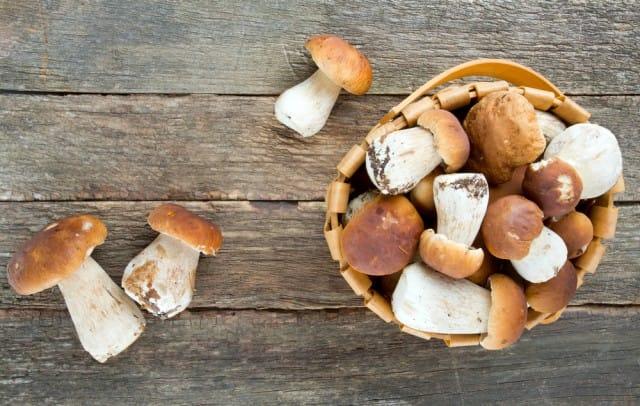 Funghi porcini al rosmarino, una ricetta vegana dietetica, sana e ricca di gusto