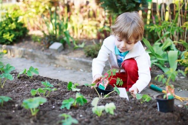 Coltivare l'orto con i bambini: una guida per insegnare la passione