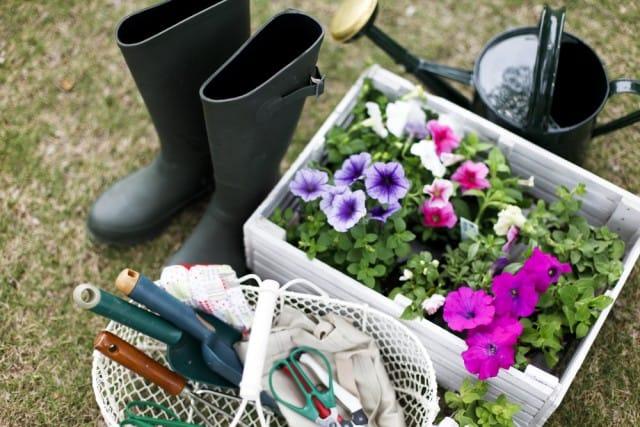 orto-in-casa-in-primavera-idee-semplici-e-senza-sprechi (2)