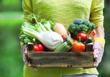 Frutta e verdura, come si conservano e non si sprecano durante l'estate