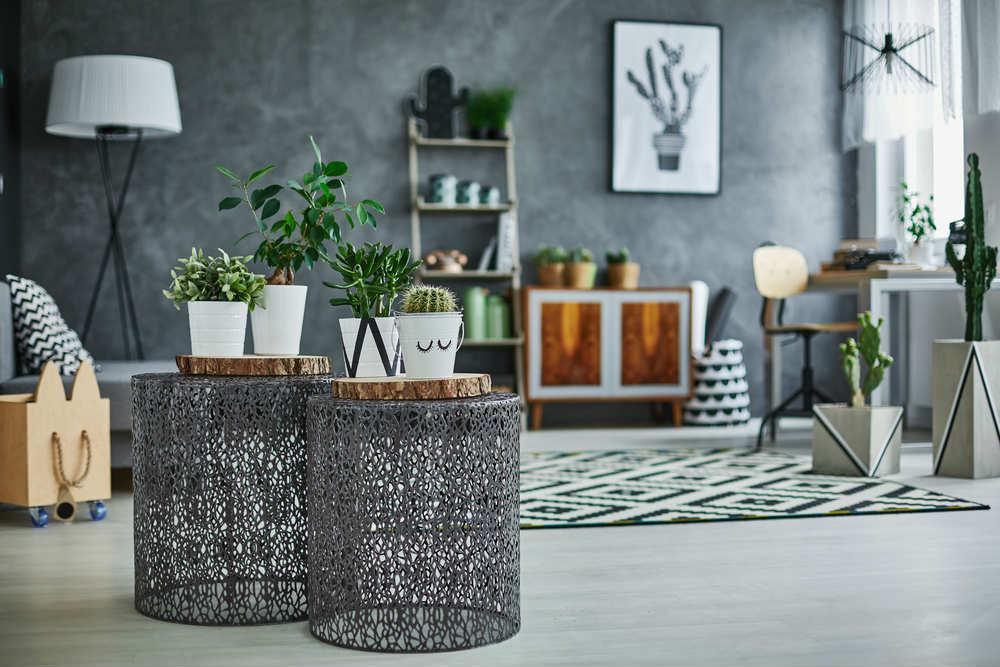 come arredare casa con piante